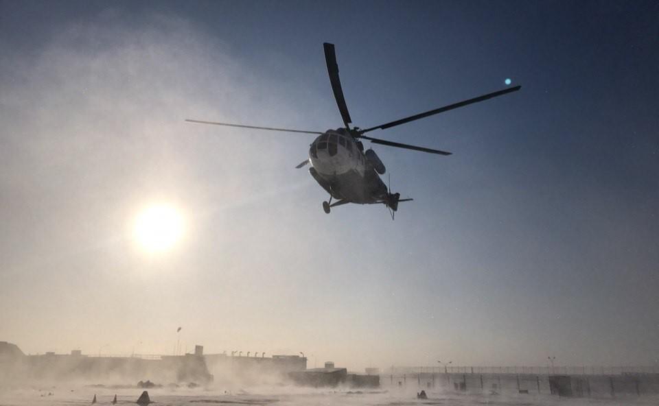 Щенка серого тюленя с Гогланда доставили вертолетом в Центр реабилитации морских млекопитающих