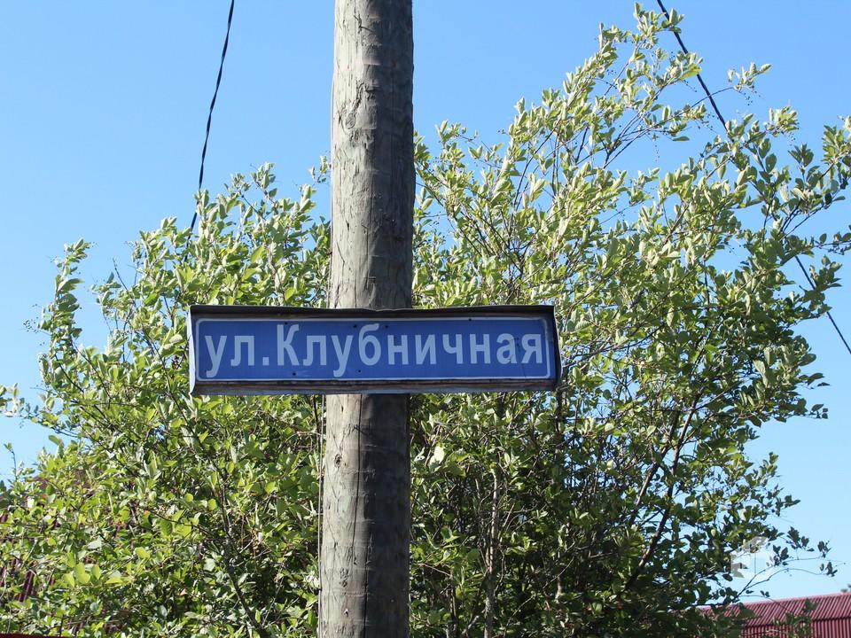 Улица Клубничная в поселке Пальцево