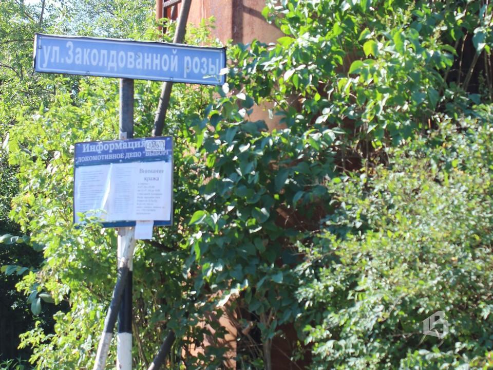 В Пальцево есть улица Заколдованной розы