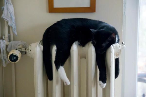 Отопление в Выборге