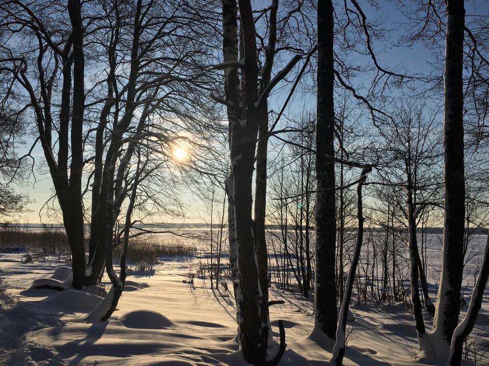 зима в Приморске