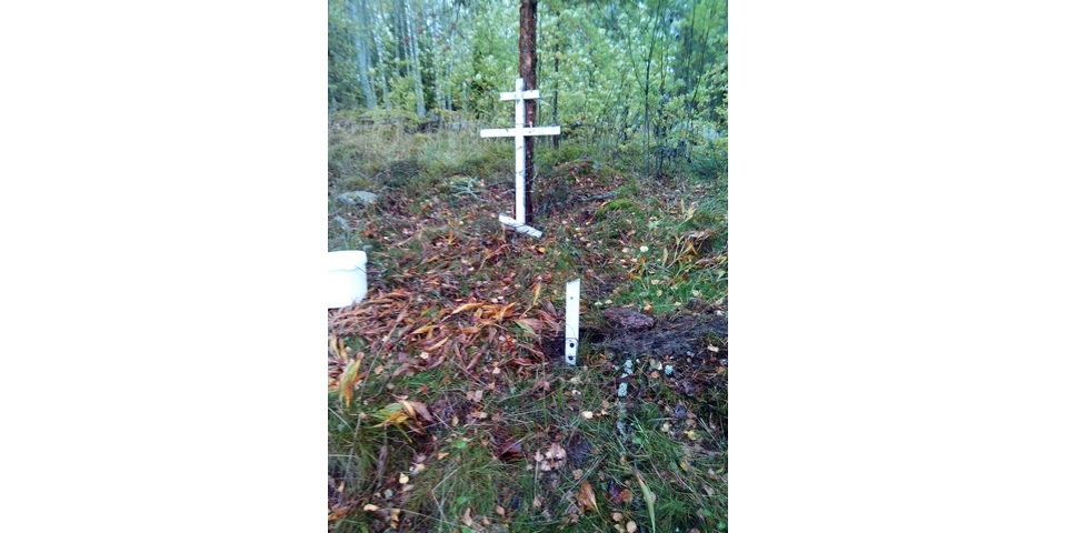 Выборгские поисковики обнаружили на острове забытую братскую могилу